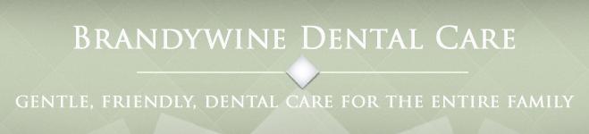 Brandywine Dental Store